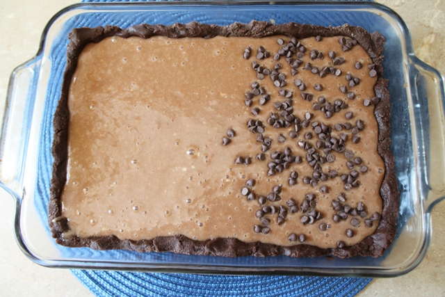 Texas Gold Bars With Chocolate Chips