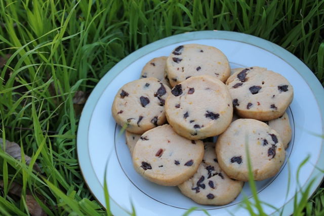 Orange Shortbread with Dried Cherries3